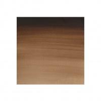 WINSOR & NEWTON -  PROFESSIONAL WATER COLOUR TUBES - 5ML - VANDYKE BROWN thumbnail
