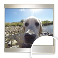 Symphony Style Silver Plated Frame 5x7 (13x18cm) thumbnail