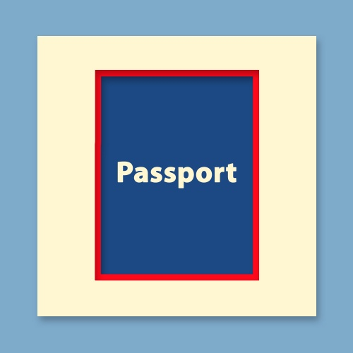 Passport Size Picture (D)